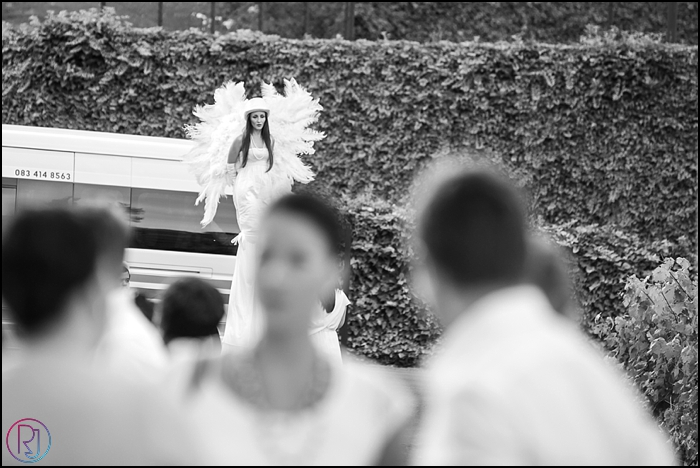 Ruby-Jean-Photography-AWC-Molenvliet-Absolute-Weddings-108