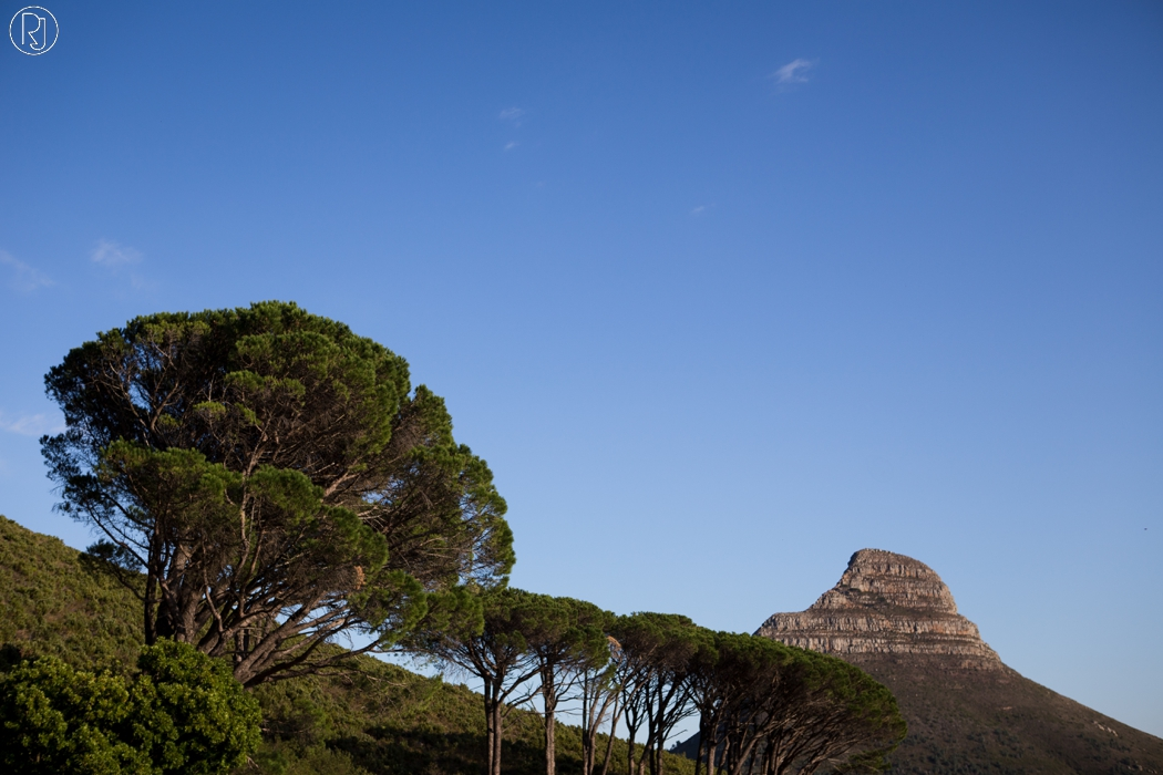 RubyJean_Photography-Travel_South_Africa_Cape_Town-S&K-072