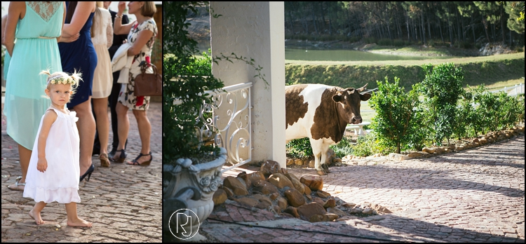 RubyJean-photography-Langkloof-Roses-Wedding-C&L-726