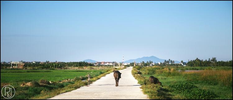 RubyJean-Vietnam-Travel-Photography-080