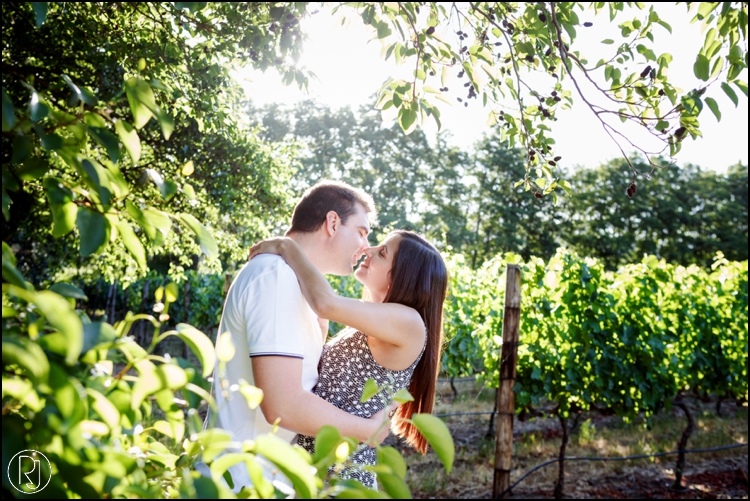 RubyJean-Secret-Proposal-Engagement-franschhoek-289