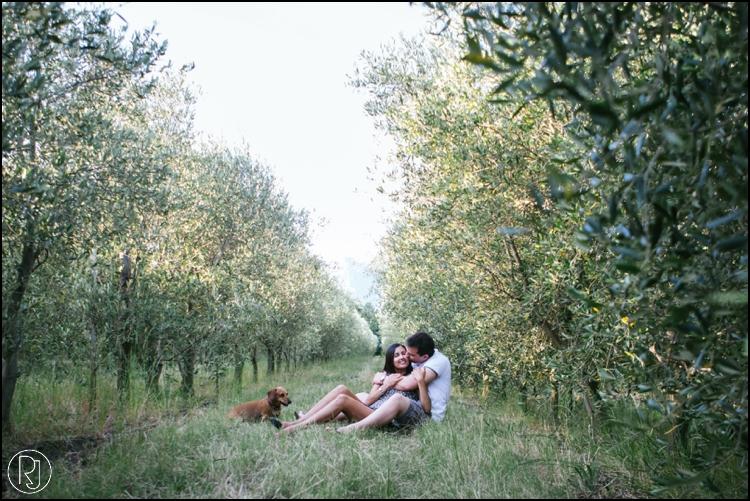 RubyJean-Secret-Proposal-Engagement-franschhoek-299