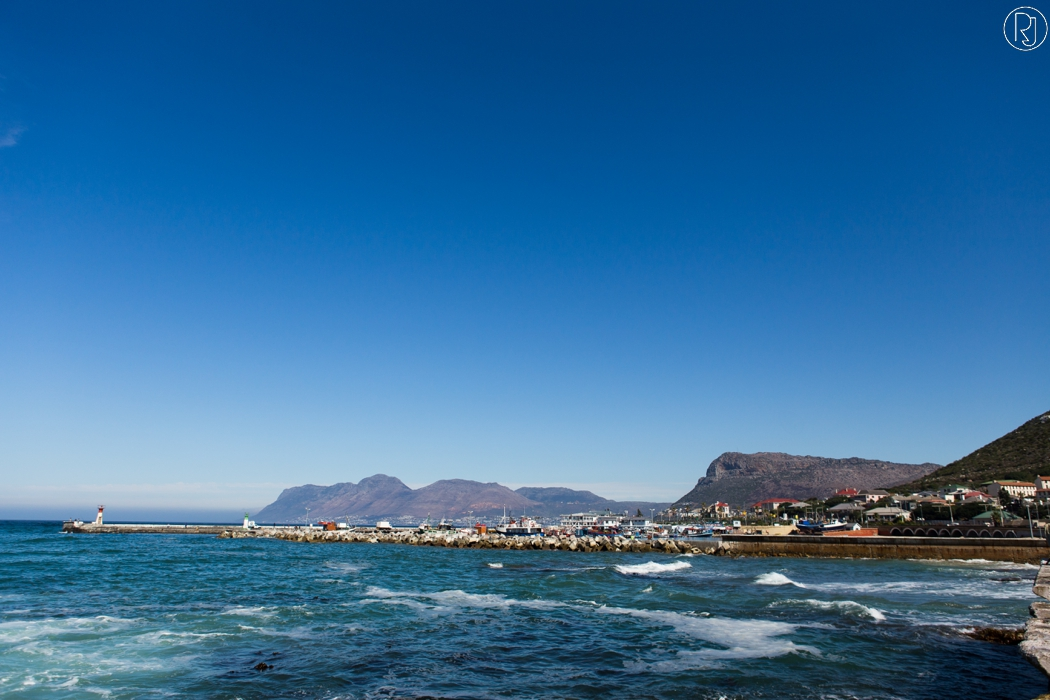 RubyJean_Photography-Travel_South_Africa_Cape_Town-S&K-059