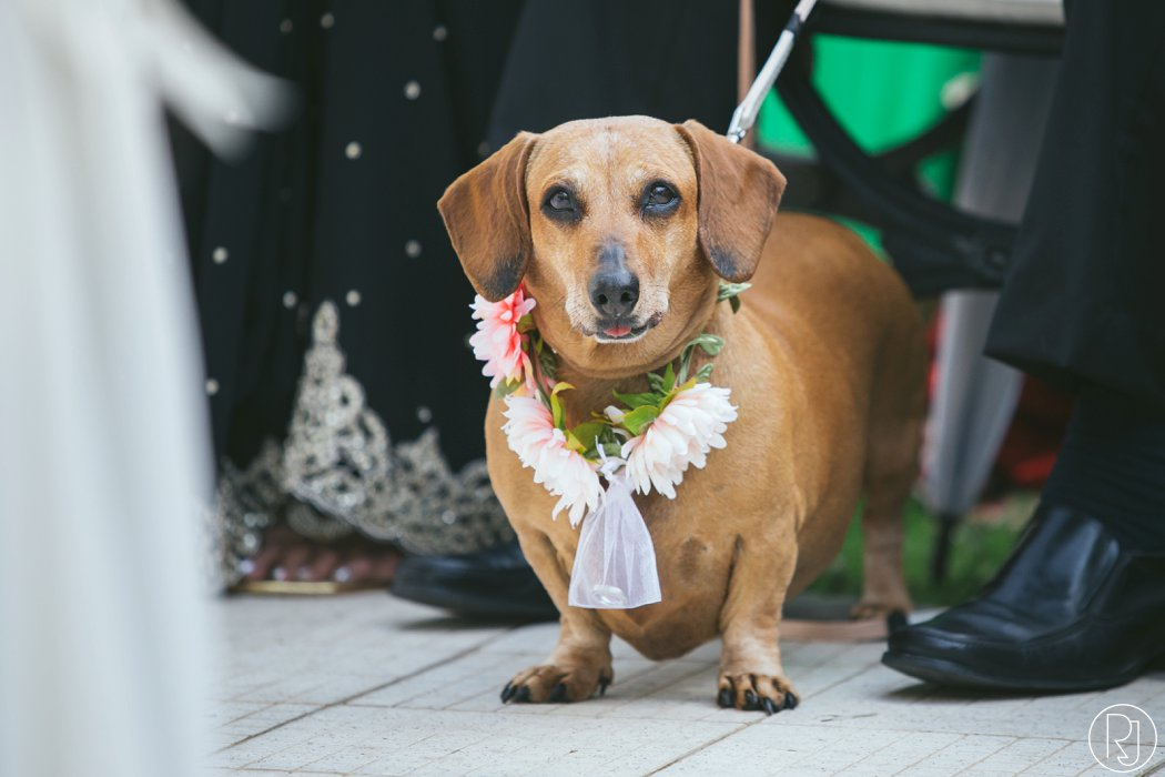 ruby_jean_photography-oyster_box_durban_wedding-065