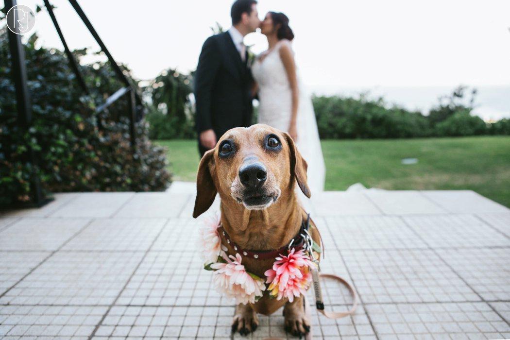 ruby_jean_photography-oyster_box_durban_wedding-130