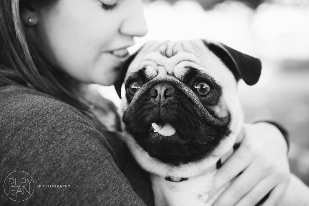 rubyjean-pug_dog_photography-kenny-059