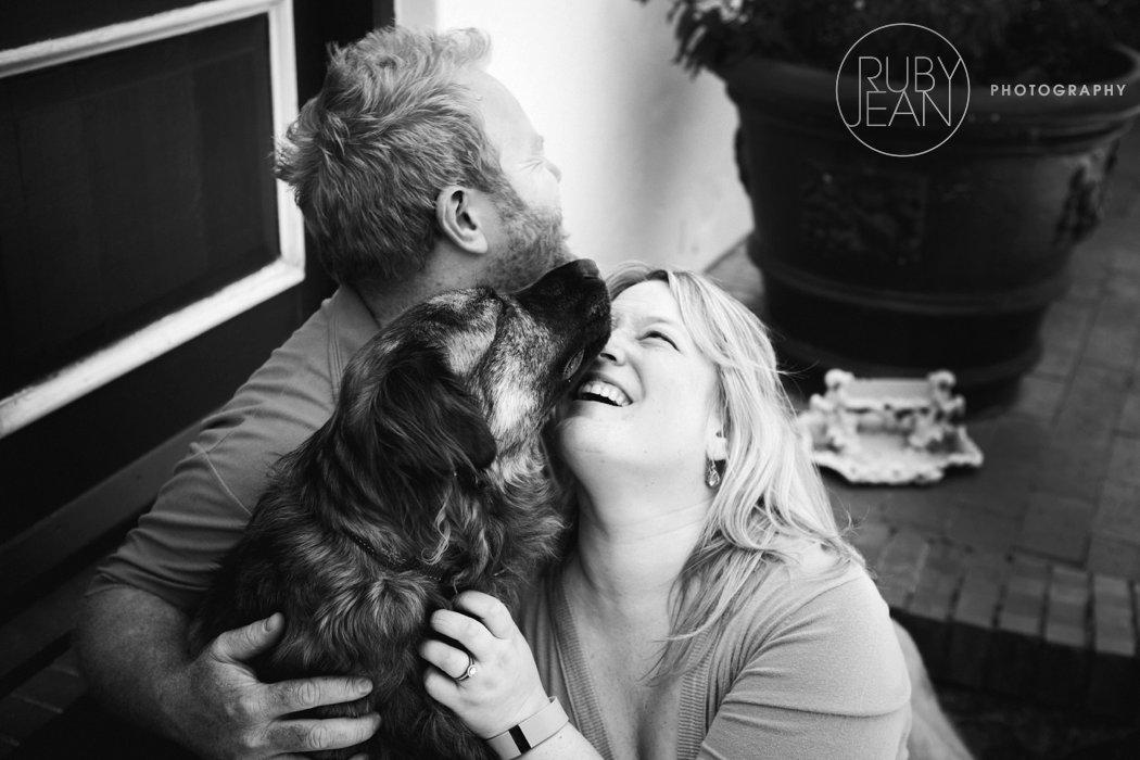 rubyjean_photography_christmas-pet_portraits-teddy-047