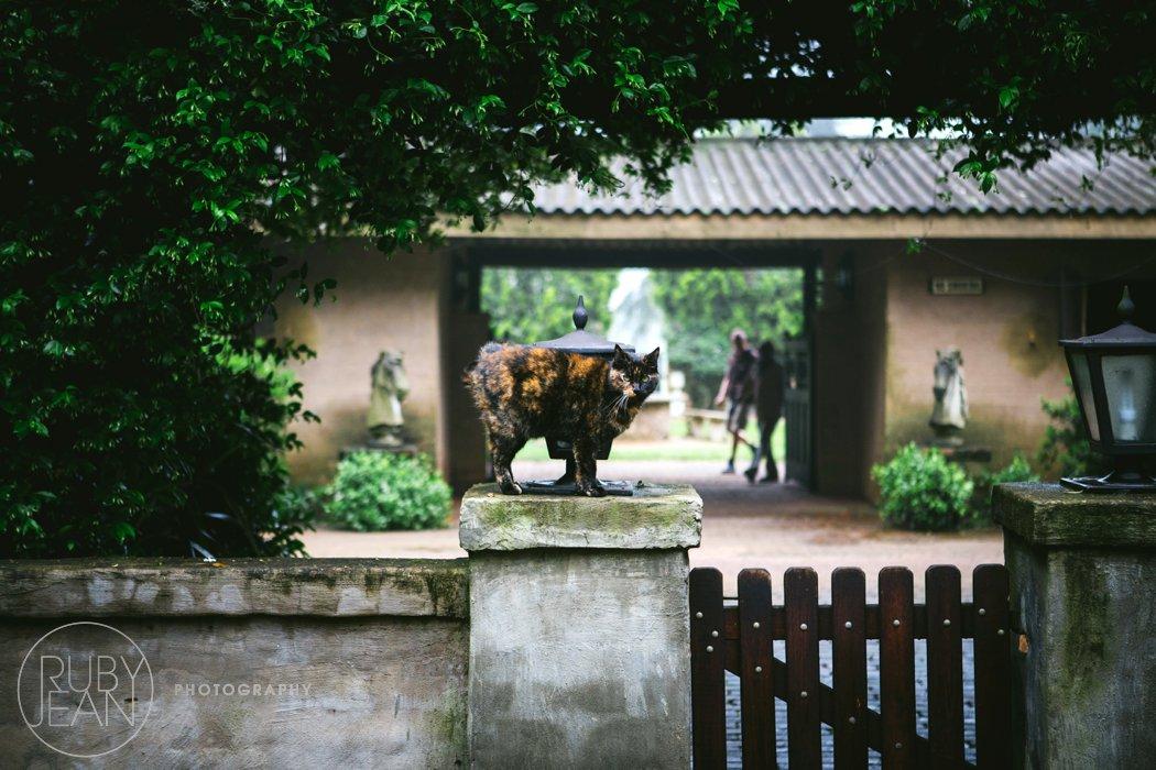 rubyjean_photography_top_billing_wedding_pascalsarah-004